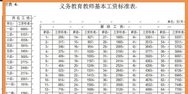天龙私服教师工资标准中的岗位工资分十三级若干档、薪级工资分五十二级?