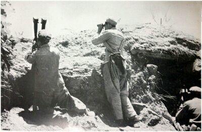 長津湖戰役後,志願軍最強炮兵終於參戰,陳賡興高采烈:炮兵威猛