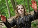 """18期:""""哈利·波特""""终篇 魔法三人组寻死亡圣器"""
