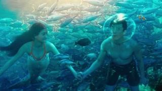 刘轩和珊珊开始正常生活 人和人鱼一起游泳?