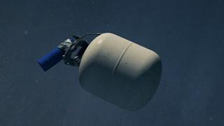 如何在北极圈正确炸鲨鱼