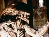《异形3》片段:异形杀戮史上死的最怨的哥们,没有之一