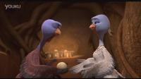 火鸡总动员 片段2:Baby Turkeys