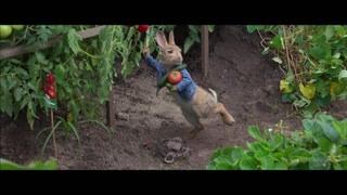 比得掉落西红柿被麦格雷戈发现