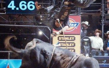 《最长的旅程》精彩片段 公牛凶猛斯科特被甩出