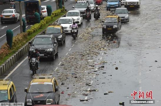 印度孟买巨浪滔天 500吨被垃圾冲上海岸线