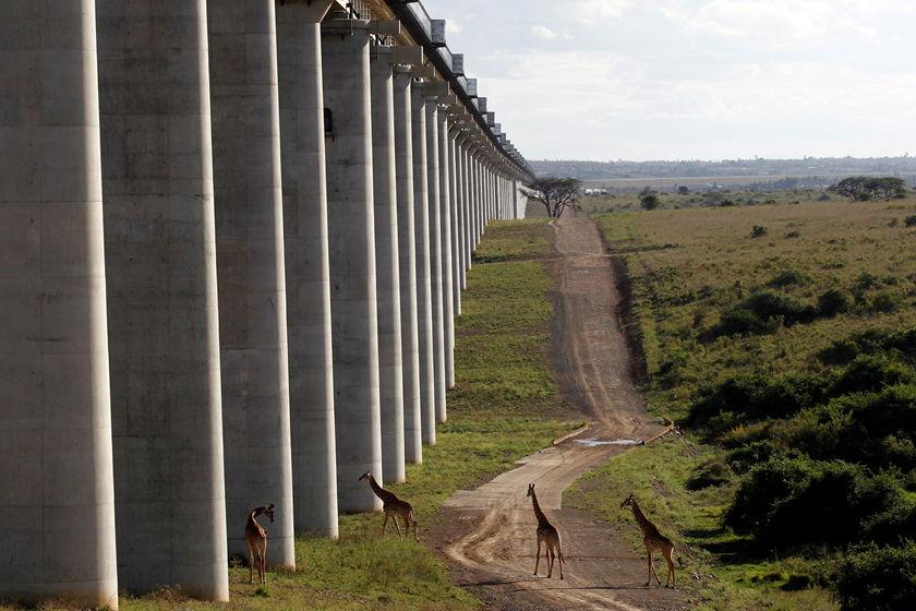 搜狗图片-share555中企承建的肯尼亚内马铁路一期通车(5)