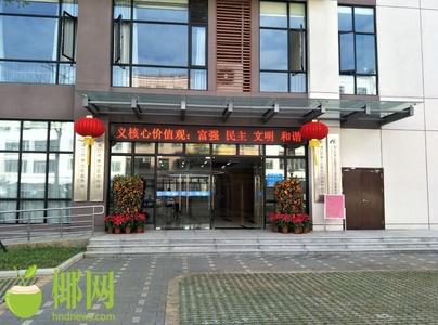"""海口美兰区""""三馆一中心""""春节文化惠民"""