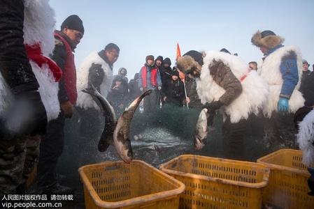 黑龙江五大连池:冬日渔歌