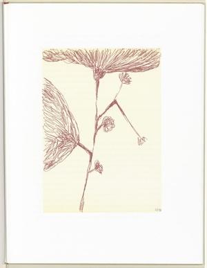 路易丝·布尔乔亚-Untitled, plate 7 of 10, from