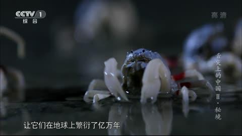 2014-05-23舌尖上的中国 第六集《秘境》