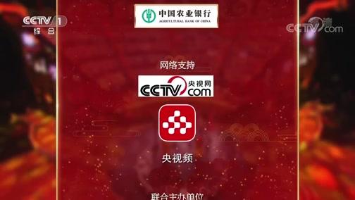 《中国诗词大会》第五季 第十场 20200209