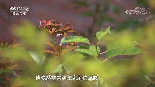 《忏悔录》 20190908 法治的阳光——春风化雨润心田