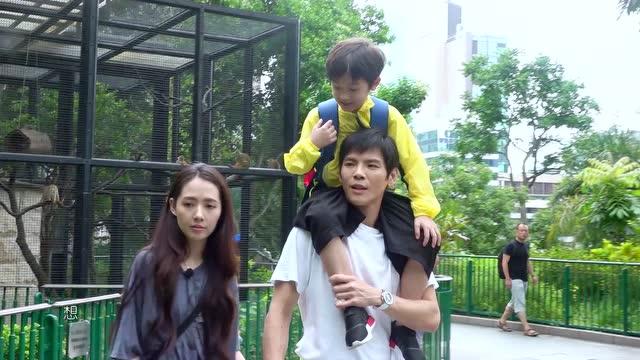第8期:向佐郭碧婷带干儿子逛动物园