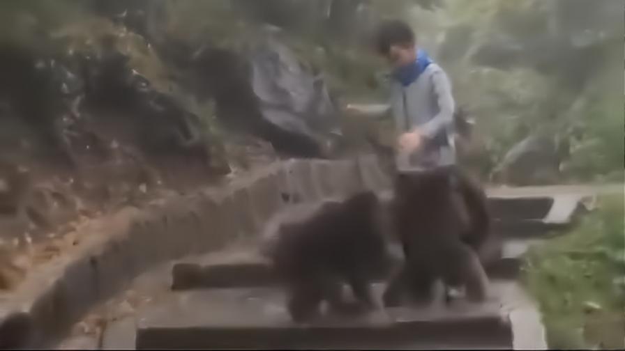 快走开,我不是你们猴哥!