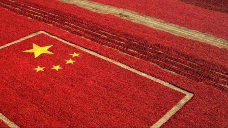 巨龙崛起 中国站在世界舞台的最中央《厉害了 我的国》