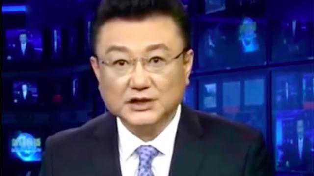 央视主播王宁近照曝光 自曝离开央视真实原因
