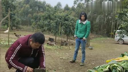 农村王四:勇哥带上设备平秧田,在李保的指引下操作,感叹干农活的