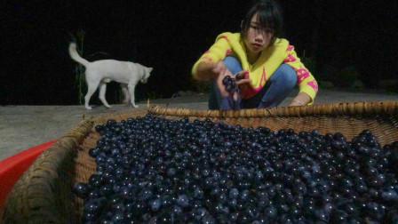葡萄酒也能家庭自酿?农村妹子在家自酿,做法简单够喝一年