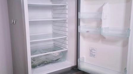 无论冰箱多耗电,只要冰箱里放上它,一年可以省下几百块电费!