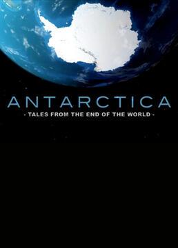 南极故事剧照
