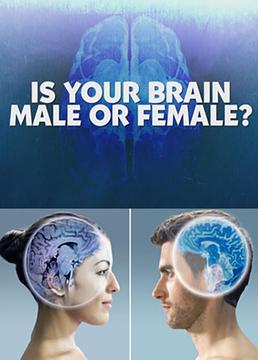 地平线我的大脑是男是女?剧照