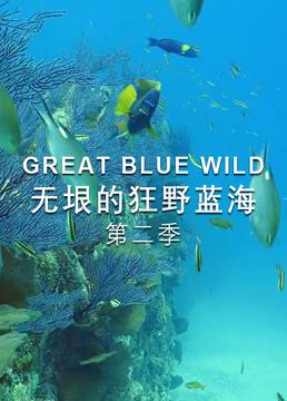 无垠的狂野蓝海第二季剧照