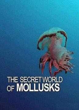 软体动物的神秘世界剧照