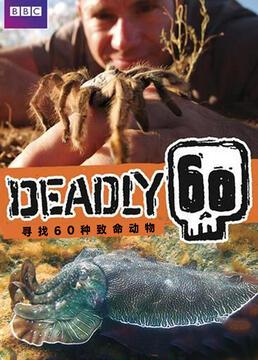 致命的60种生物第三季剧照