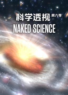 科学透视第六季剧照