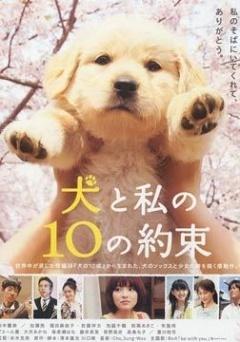 狗狗与我的十个约定剧照