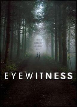 目击证人剧照