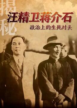 揭秘汪精卫蒋介石政治上的生死对头剧照