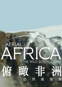 俯瞰非洲剧照