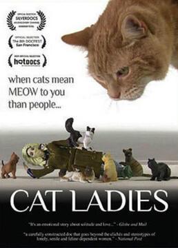 猫女士剧照
