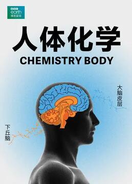 人体化学剧照