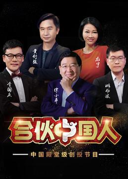 合伙中国人第二季剧照