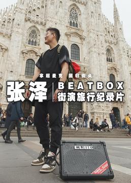 beatbox街演旅行纪录片剧照