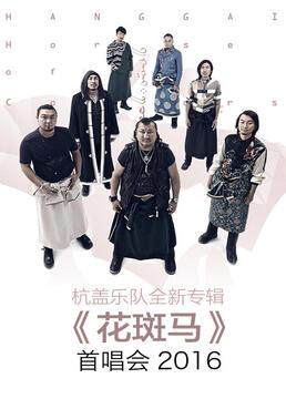 杭盖乐队全新专辑花斑马首唱会剧照