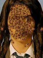 吃蜜蜂的女孩剧照