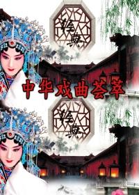 中华戏曲荟萃剧照
