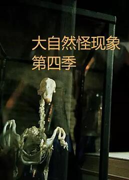 大自然怪现象第四季剧照