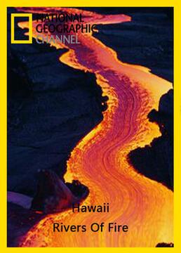 夏威夷生命之火剧照