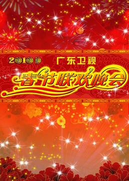 广东春节联欢晚会剧照