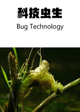 科技虫生剧照