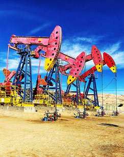 石油的故事剧照
