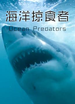海洋掠食者剧照