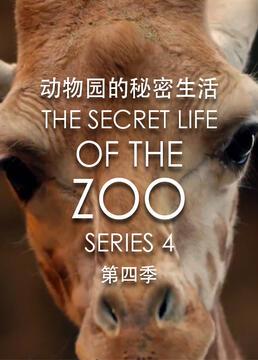 动物园的秘密生活第四季剧照