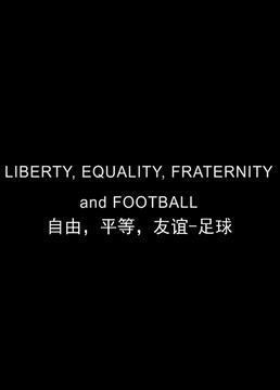 自由平等友谊足球剧照