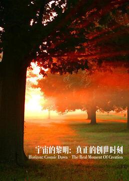 宇宙的黎明真正的创世时刻剧照